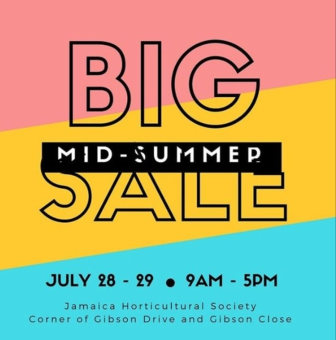 Art & Craft Summer Fair this Weekend at The Jamaican Horticultural Society!