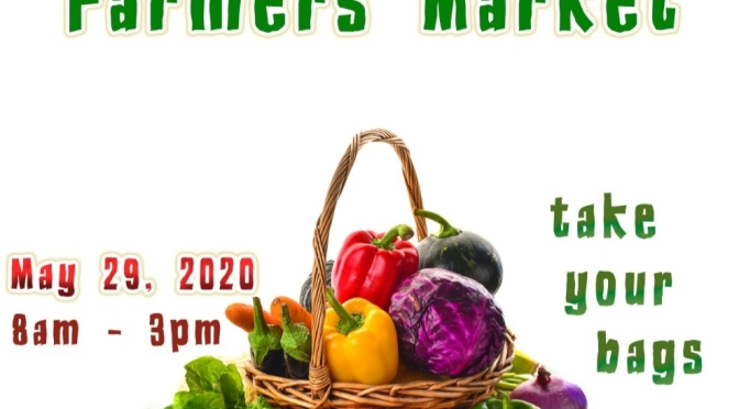 Say Yes to Fresh!  Support Kingston & St. Andrew's Farmer's Market this Friday!